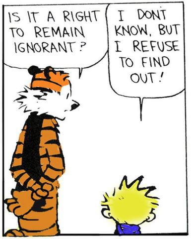 Sounds about right. Thanks, Calvin & Hobbs.